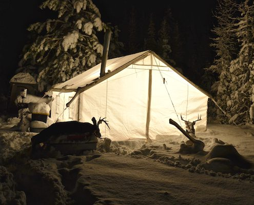 FREQUENTLY : pics of tents - memphite.com