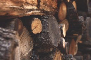 , Best Wood Stoves For Your Canvas Tent